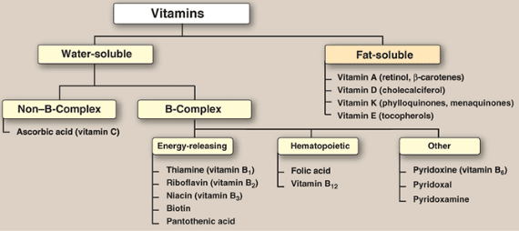 Vitamins - uses for general knowledge and general awareness