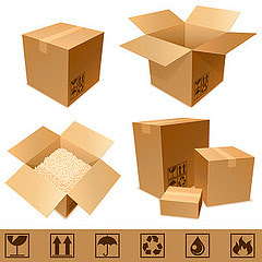 Tips Memilih Jasa Cargo yang Terbaik