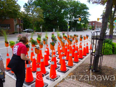 Red parking cones hold flowerpots in a temporary garden in a parking spot on Lakeshore Road East in Port Credit.