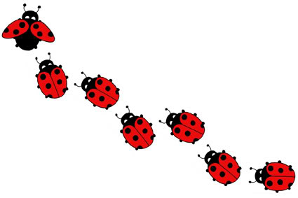 The Turn Up Patch The Ladybug Amp Perspective
