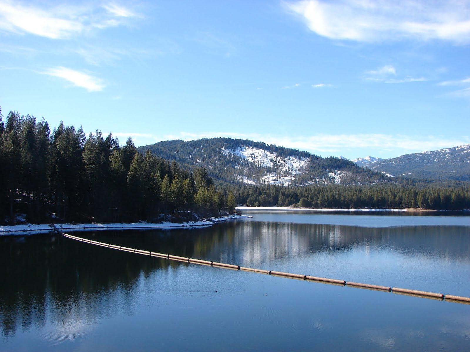 My sister was a st bernard nearby lake siskiyou for Lake siskiyou resort cabins