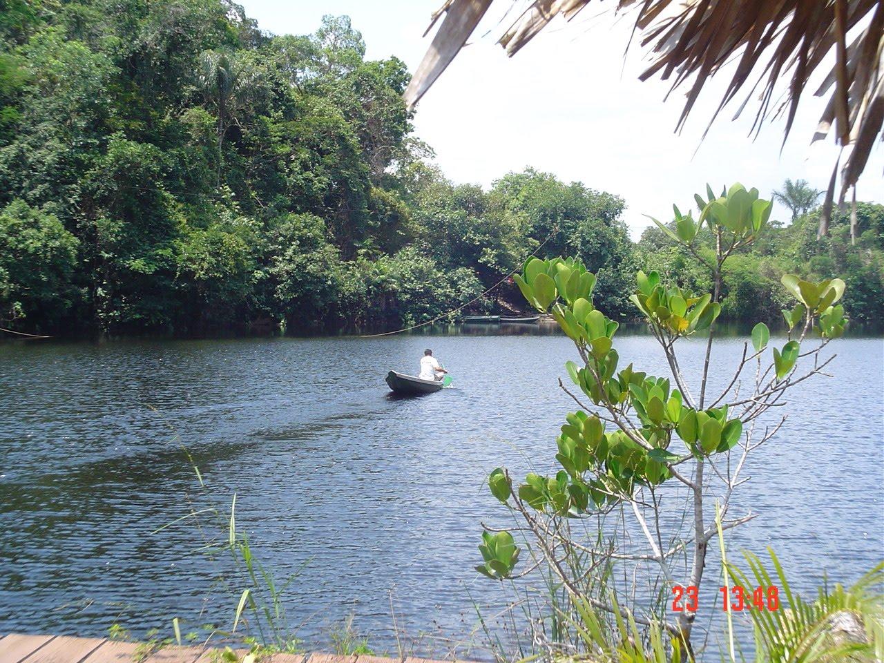 Fórum Amazônico de Sustentabilidade #6A813E 1280x960