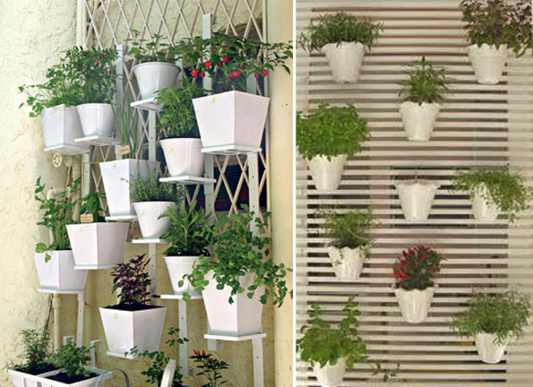 mini jardim de temperos:Eco Hortas: Mini Hortas para Apartamentos e Pequenos espaços