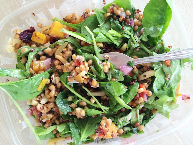 Roasted Butternut Squash, Red Quinoa and Wheatberry Salad from Trader Joe's