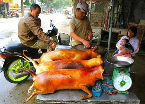"""3 món ăn """"xả xui"""" của người Việt, ẩm thực, khám phá ẩm thực, am thuc 3 mien, mon ngon viet nam, mon an dan gian"""