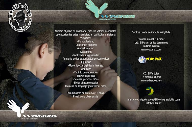 Clases de WingKids