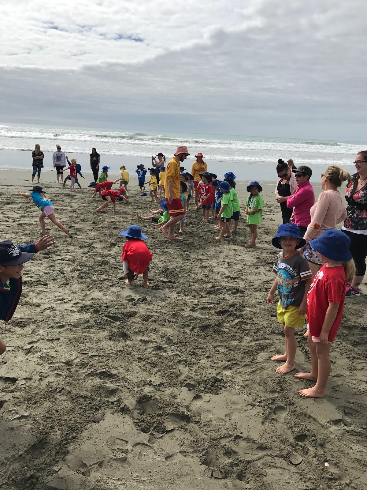 Beach Education!