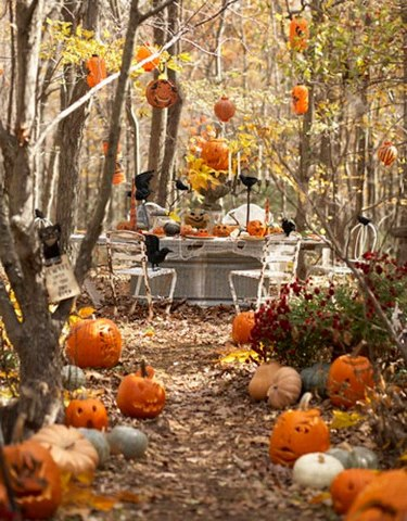 Cute and funny pictures and more wonderful outdoor Fall decorating ideas for dinner party