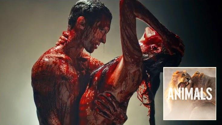 Lirik Lagu Animals - Maroon 5   Lirik Lagu Dunia
