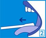 El limpiador lingual Halita está diseñado para limpiar las zonas más lejanas de la lengua