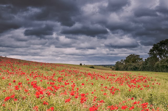 What influences influenced the war poet Wilfred Owen?