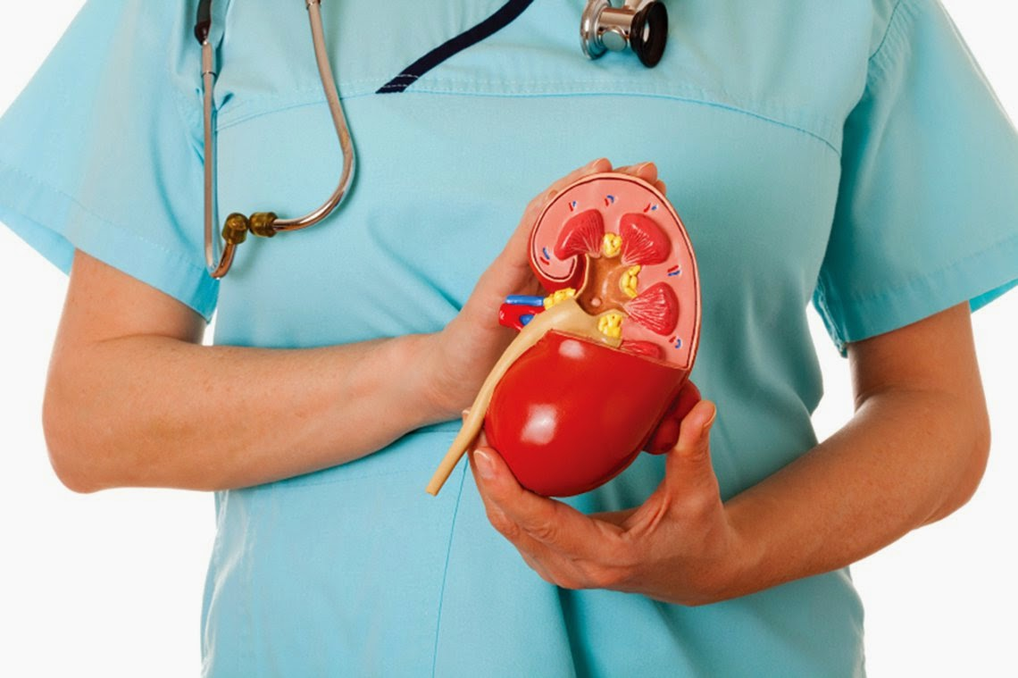 10 Deadly Habits That Seriously Damage Your Kidneys