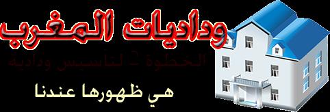 وداديات المغرب