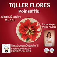 CURSO FLORES -POINSETIA