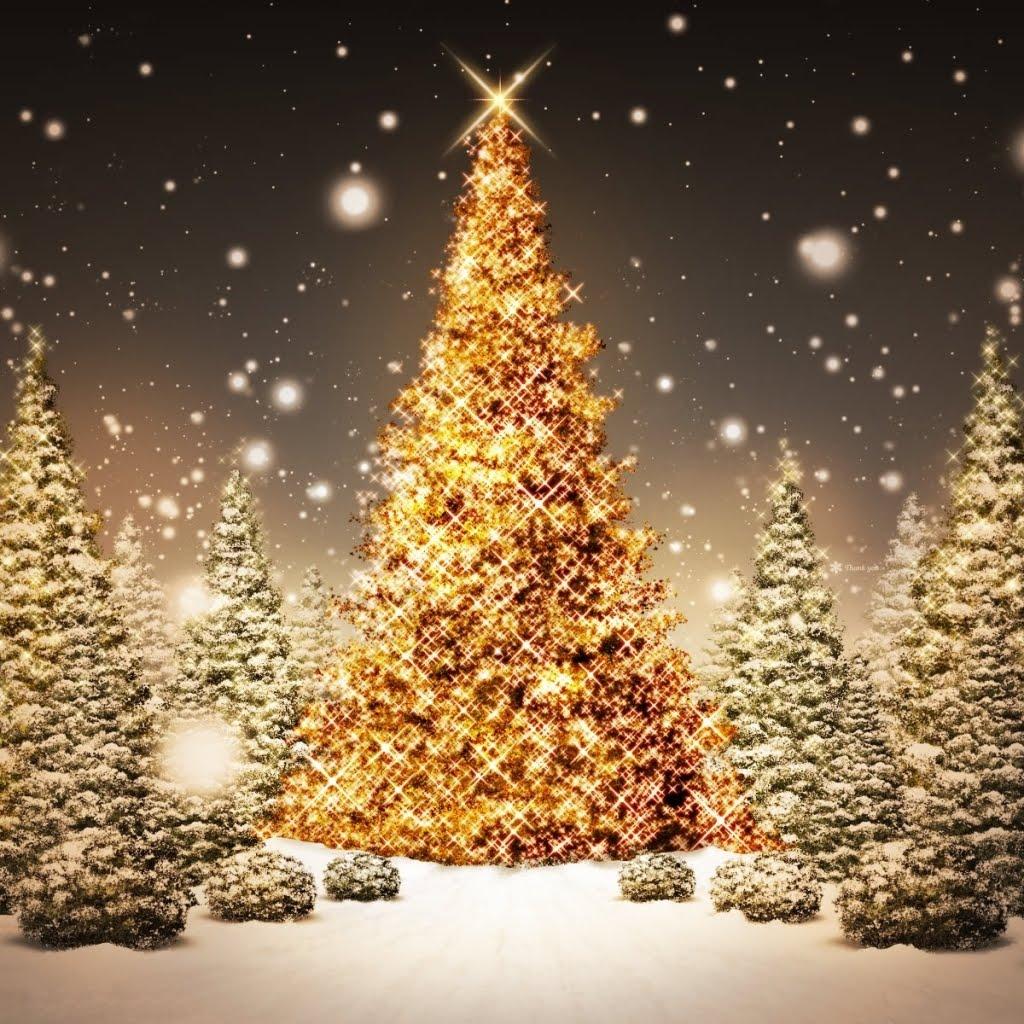 Tree nature background christmas tree nature background christmas tree