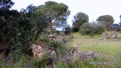 Bolos de Granito Sierra Andujar
