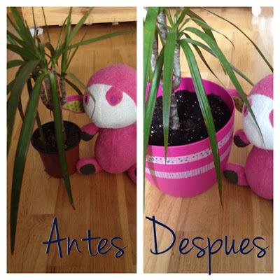 Pinafili diy decoraci n con plantas - Plantas ikea naturales ...