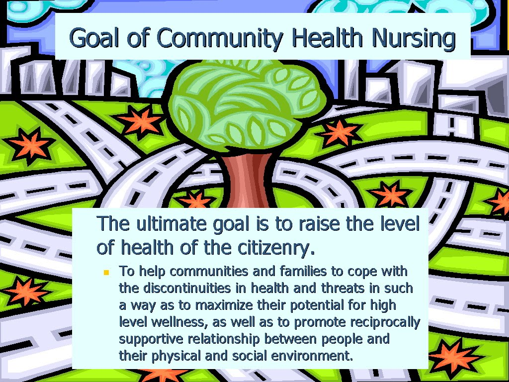 Community health nursing paper term