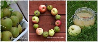 äppelmos med kanel