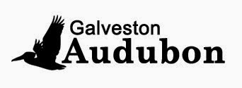 Galveston County Audubon