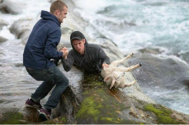 #24. Erick and Torvald courageously saved this baby lamb from drowning in a raging river in Norway. - 24 Happy Animal Photos Made Possible By The People Who Saved Them.