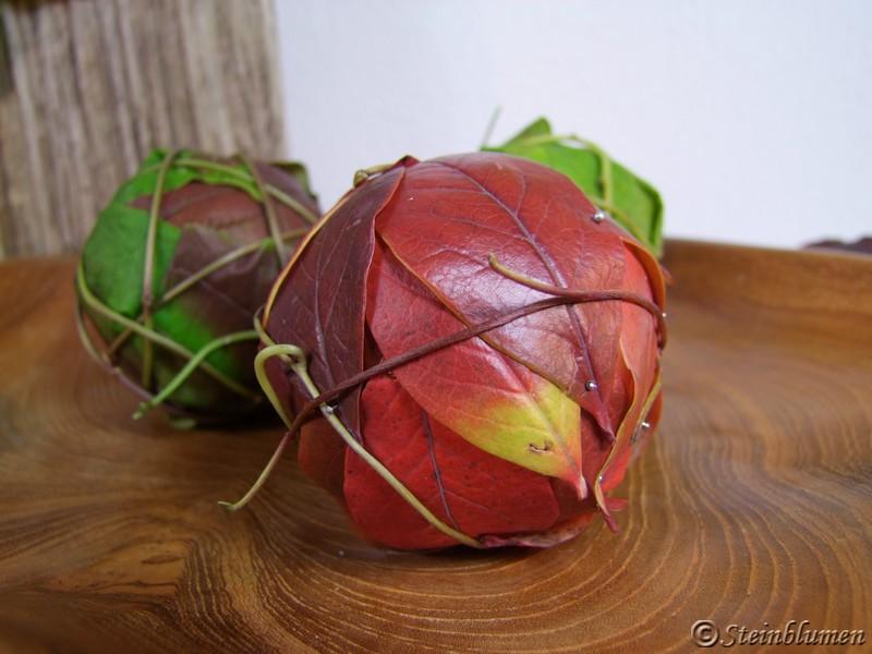 Kulturheidelbeere Blätter