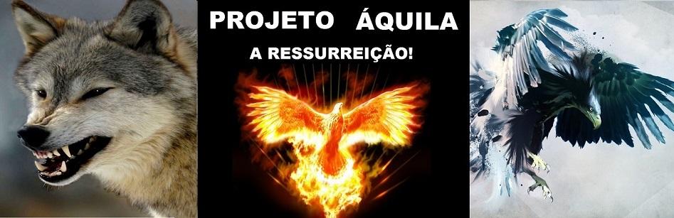 Projeto Áquila