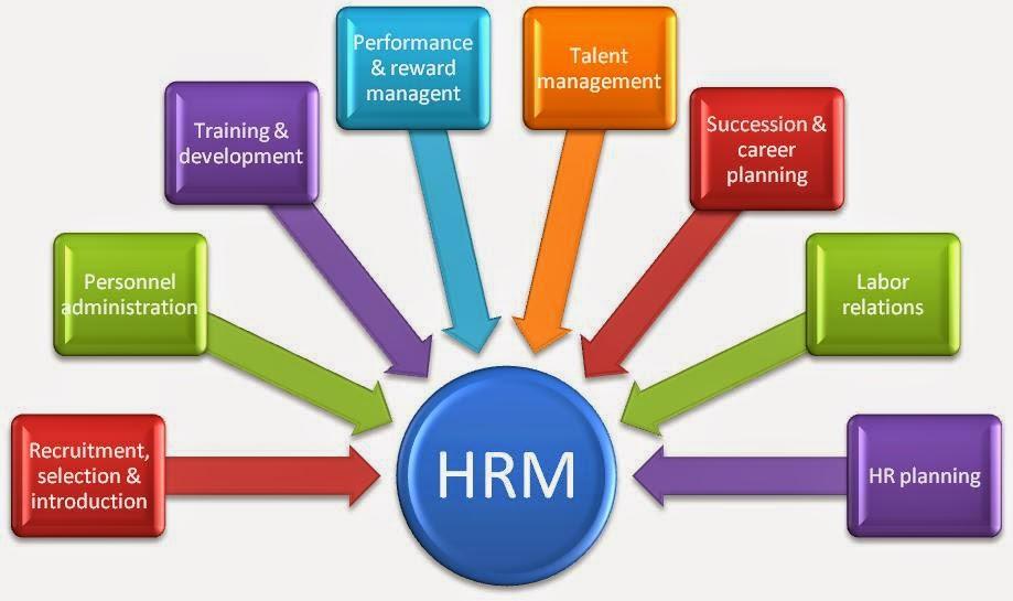 human resource management system software pdf