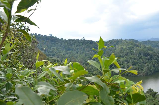 Adventure TeamBuilding - BigTree Tours Mount Tabur Challenge - Bukit Melawati Climb
