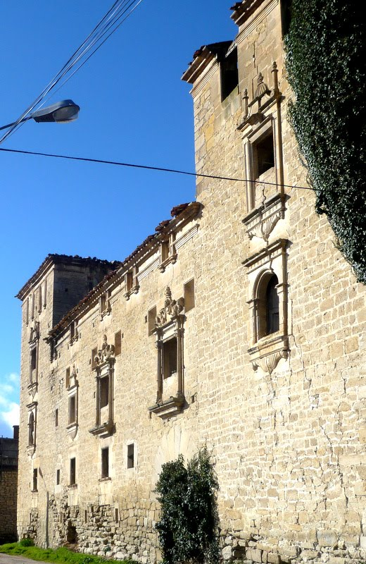 PALACIO DE CADIANOS