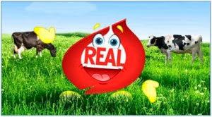 http://www.realseal.com/