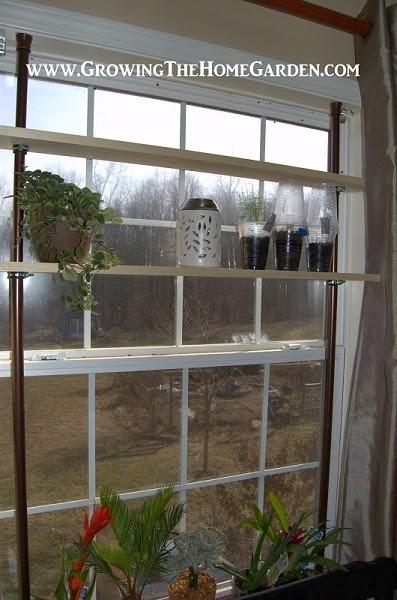A window garden with shelves growing the home garden for Window garden