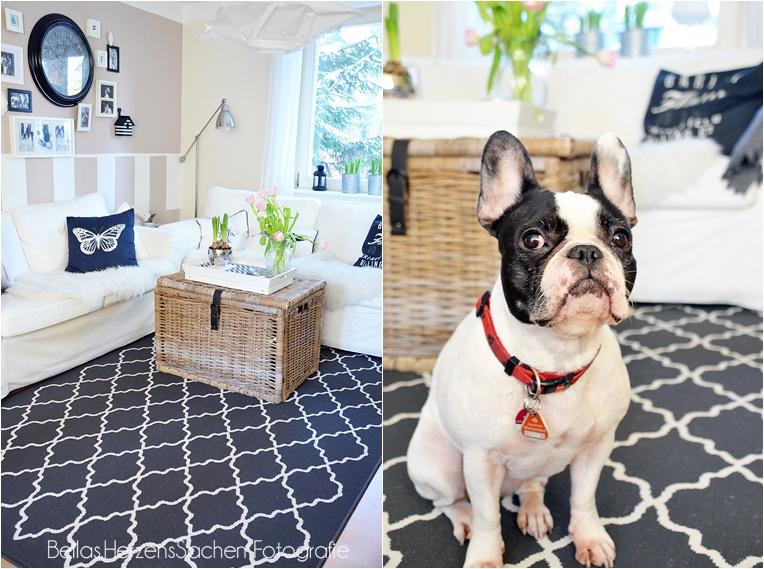 Wohnzimmer schwarz weiß, living, home Interieur, Hund, französische Bulldogge