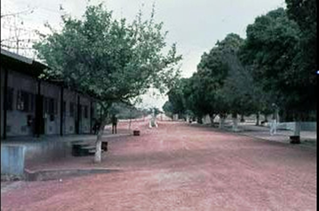 BATALHÃO DE CAÇADORES 3843: QUARTEL DE MOCUBA
