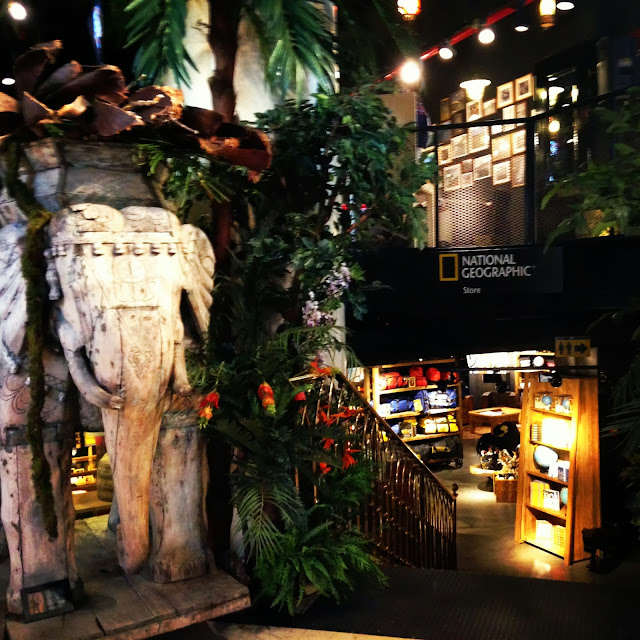 national geographic store entrance