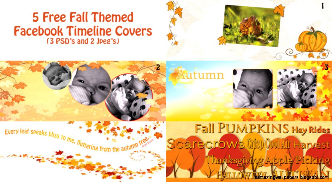 Autumn Facebook Covers PSD  CLICKandLOL
