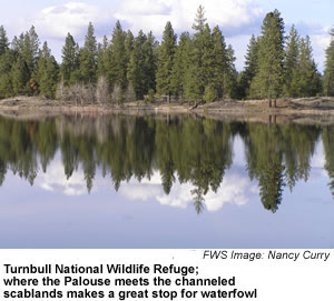 Turnbull National Wildlife Refuge, Stevens Co. Photo source: U.S. Fish and Wildlife Service)