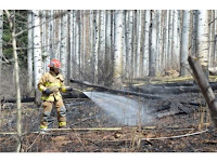 """Wildfire_in_Colorado_firefighters_on_work_image"""
