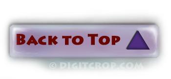 Back to top Widget for Website or Blog