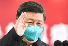 The Corona Virus and China: a Few Articles
