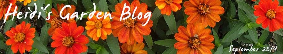 Heidi's Garden Blog