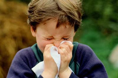 terserang flu