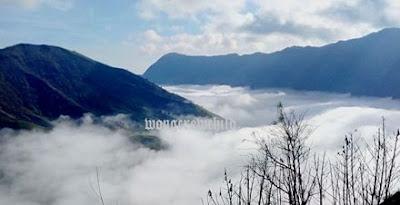 negeri diatas awan puncak b29 lumajang