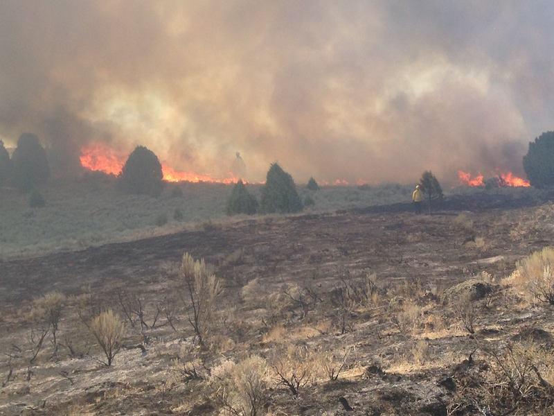 Famille perdue près des cabines en feu s'enclenche photo 'Angélique'