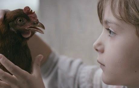 59 SEMINCI. Sección Oficial (corto). Crítica de 'La gallina' ('Kokoska'): Madurando bajo la presión de la guerra