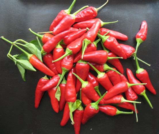how to make homemade hot sauce from hot peppers