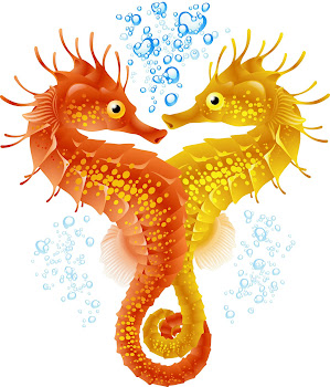 Click to See Seahorses being born
