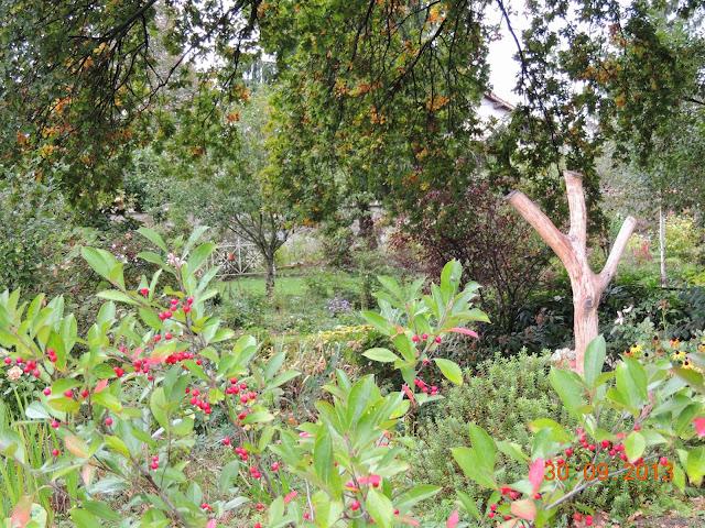 scène de jardin