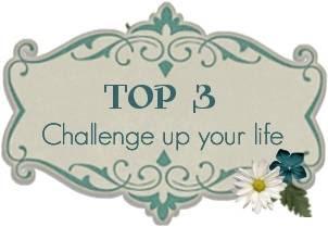 Am 31.7.2011 ,Challenge #48 bei Cutyl