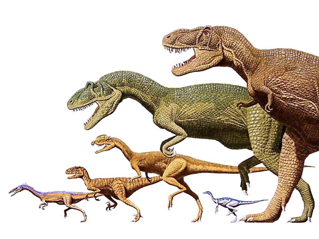 Динозавры фото картинки